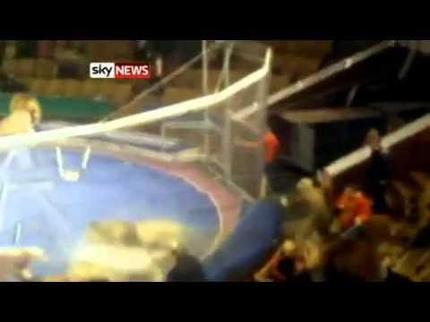 Leoni al circo, si ribellano ed aggrediscono i domatori ★ Diretta di uno spettacolo in Ucraina