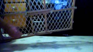 How To Use A Baby Gate HTWL
