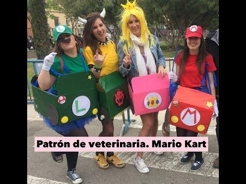 Disfraz de Mario Kart (Patrón de veterinaria) | Musarañicas
