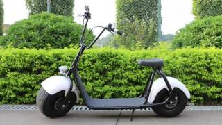 Onebot 800w fat tires scooter