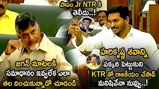 Ys Jagan Comments On Jr NTR Father Harikrishna    AP Assembly Budget Session 2019    Life Andhra Tv