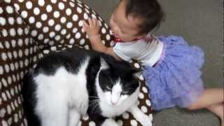 ネコと赤ちゃんゴロゴロタイム.cat&baby