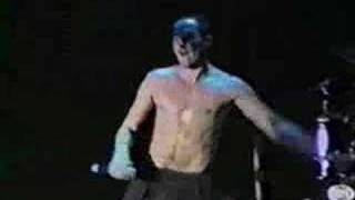 311 Hydroponic Live 1996