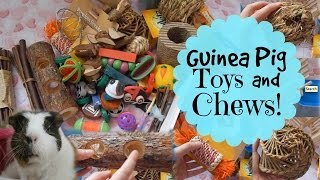 Guinea Pig Toys And Chews | Hamster HorsesandCats