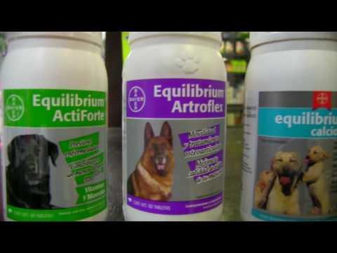 Complementos Alimenticios para perros