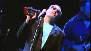 Time out of mind - Steely Dan TKV
