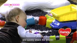 Quick guide to your babys immune system from 7 to 9 months
