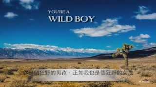 (中文歌詞影音)Avicii - Dear Boy 親愛的男孩
