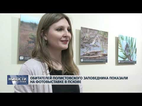 Новости Псков 08.11.2019 / Обитателей Полистовского заповедника показали на фотовыставке в Пскове