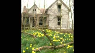 """Daffodils"" Words & Music by Donna Hughes"