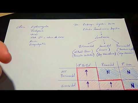 Para hacer una tintura de la hipertensión Viburnum