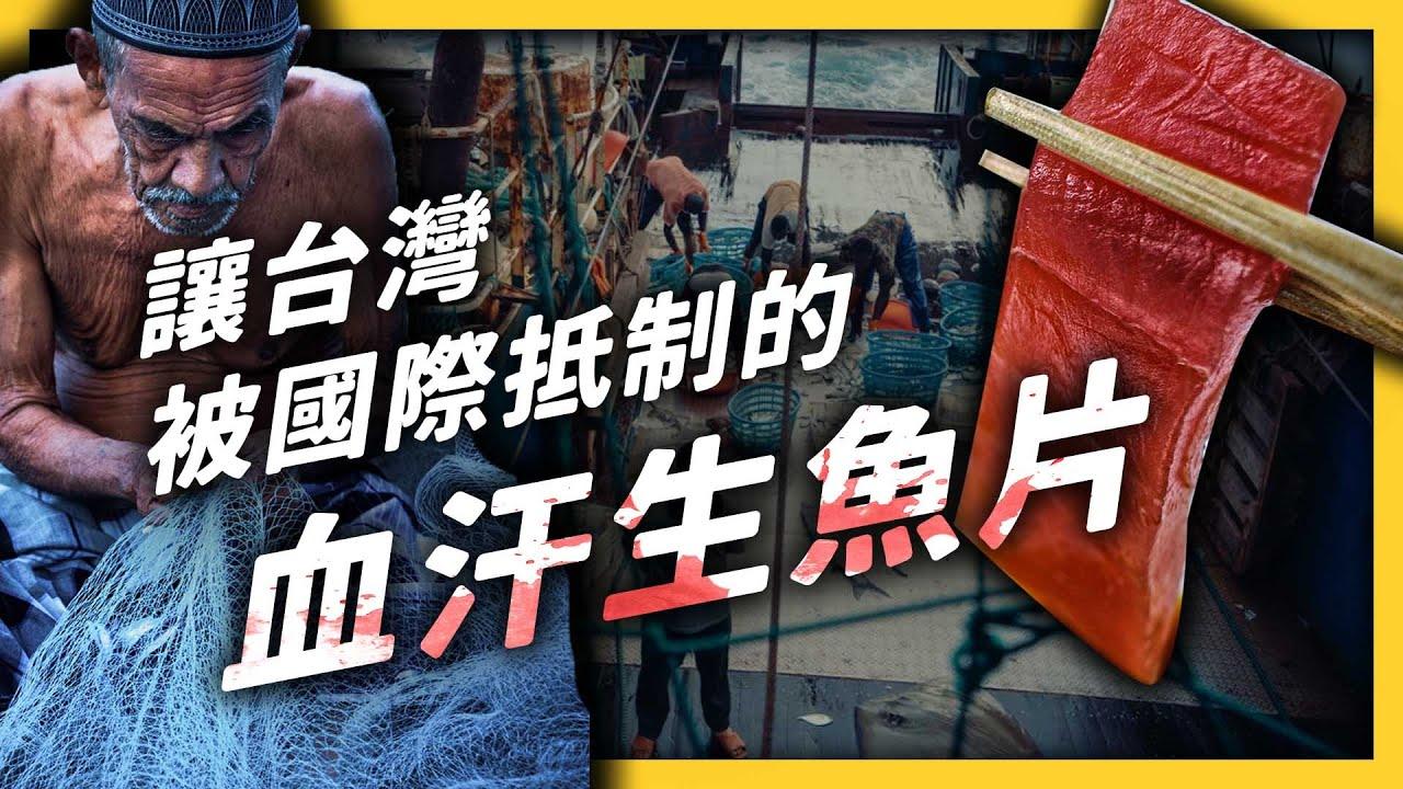 生魚片背後有怎樣的血淚故事?台灣的遠洋漁業為何被點名為「人口販運」?|志祺七七