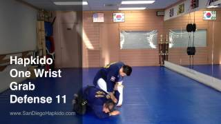 Hapkido One Wrist Grab Defense 11