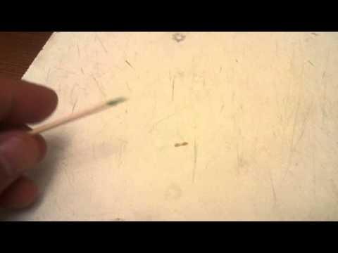 Тыквенные семечки от паразитов лямблий