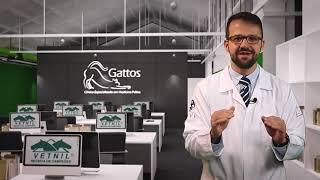 Dicas Vetnil - toxoplasmose: mitos e verdades!
