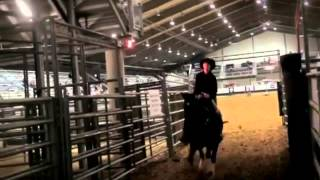 Barrel Racing: Let There Be Cowgirls