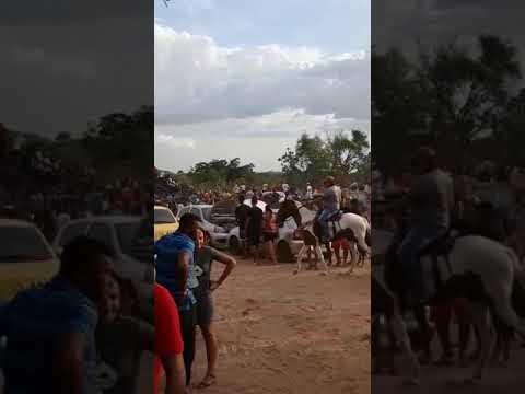 Dia 28 de dezembro alto longa Piauí