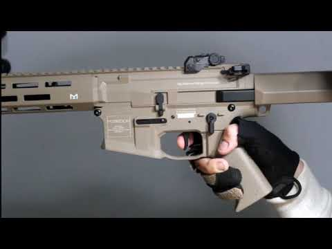 【PUNISHER AEGR】Introduction of Punisher Trident Electronic Trigger SYS