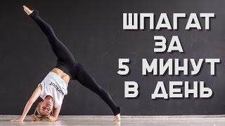 Комплекс упражнений для шпагата за 5 минут в день