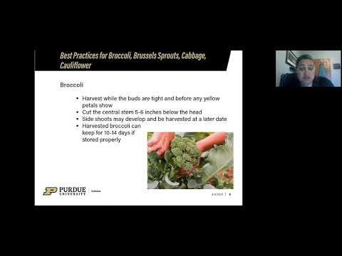 , title : 'Digging Deeper: Virtual Gardening Series: Best Practices for Broccoli, Cauliflower, Cabbage