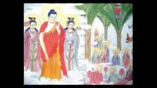 48 Đại Nguyện Đức Phật A-DI-ĐÀ (Phần 1)