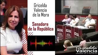 Ya basta diputados, no más traiciones al pueblo de Colima: Senadora Gricelda Valencia