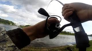 Канал им москвы рыбалка фото
