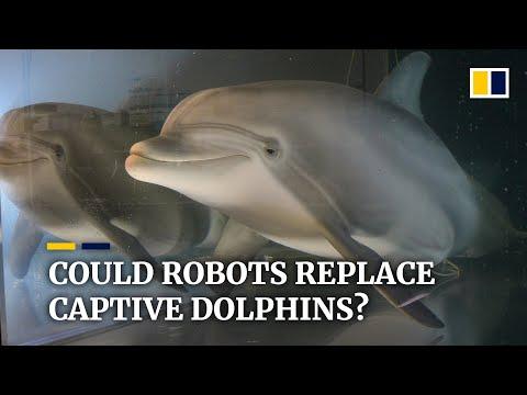 Δελφίνια ρομπότ που είναι σαν αληθινά