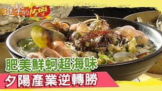 肥美鮮蚵超海味 夕陽產業逆轉勝 《進擊的台灣》第282集