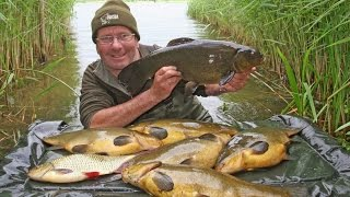 Как рыбалка на усе самарской области