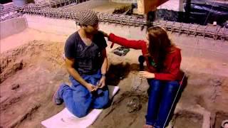 dTodo - Pintura y restos prehispánicos