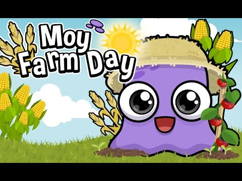 Video of Moy Farm Day
