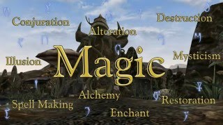 The Elder Scrolls VI What Magic Should Be Like