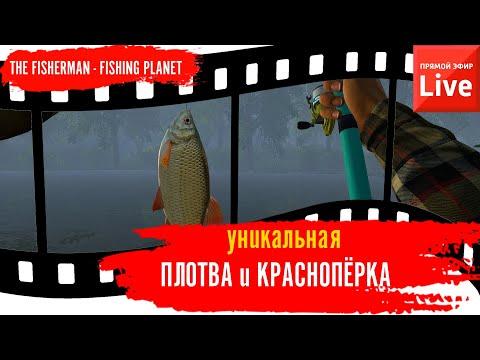 The Fisherman: Fishing Planet. р.Крёз. Уникальная Плотва и Краснопёрка.