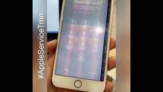 Замена экрана iPhone 6s Plus Тюмень