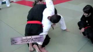 preview picture of video 'AKS-Budomeeting 2010 in Uetze (Hapkido-Herne)'