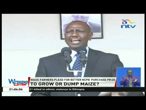 DP Ruto tells maize farmers in Trans Nzoia to consider cash crops