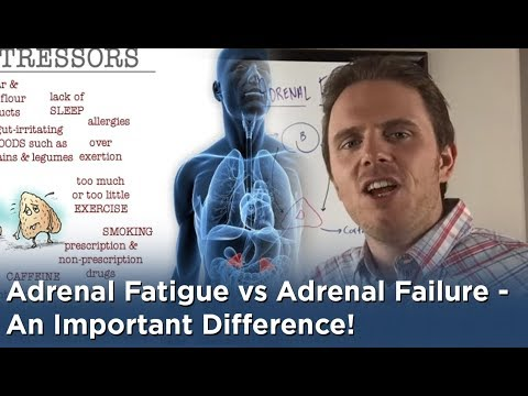 Video Adrenal Fatigue vs Adrenal Failure - An Important Difference!