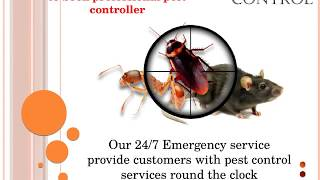 Fast Pest Control