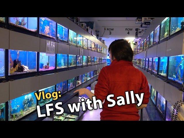 Vlog: Shopping for Sally's 8g Reef Tank (11/19/2016)
