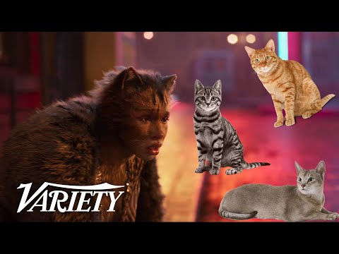 What Does the 'Cats' Cast Have in Common with Real Cats?