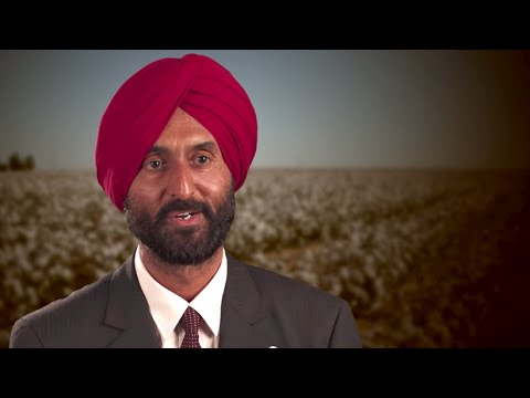 BT Cotton in India: A Farmer's perspective