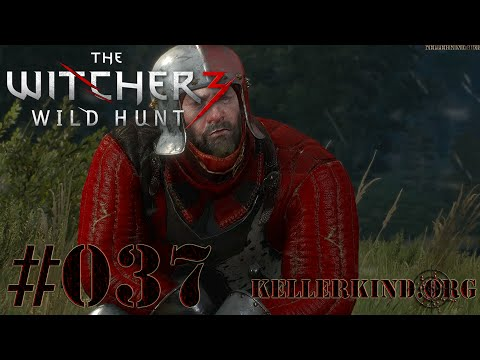 The Witcher 3 [HD|60FPS] #037 Viele kleine Aufgaben ★ Let's Play The Witcher 3