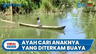 Video Perjuangan Ayah saat Cari Anaknya yang Hilang Diterkam Buaya, Warga Tak Berani Masuk Sungai