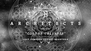 Architects - Colony Collapse