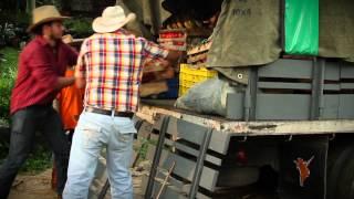 Padre - Dame Pa Matala  (Video)