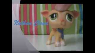 LPS Imperfect Promo 2 0