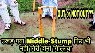 Middle-stump Uprooted But Bails Unmoved_D-Cricket
