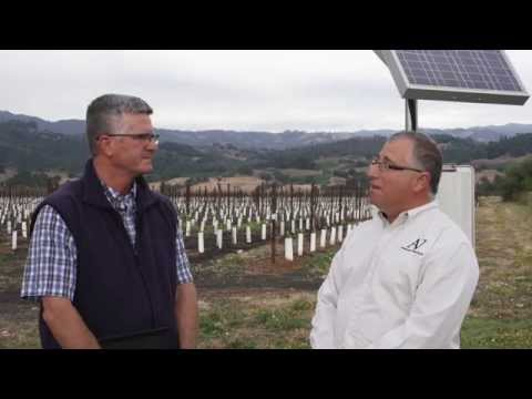 Water Conservation and Vineyard Irrigation: Monito