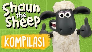Shaun the Sheep   Full Episodes Compilation 13-16   Season 5   Funny Cartoons For Kids